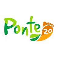 Ponte 20 - Зима 2021